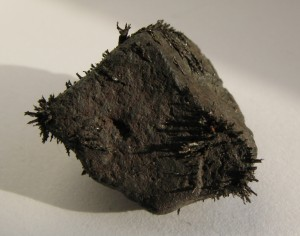 Magnetite_with_iron_shavings