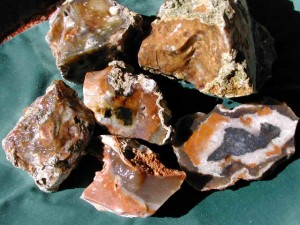 savannah river agate